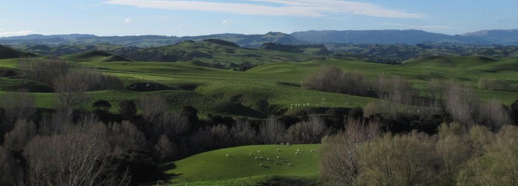 Rural & Farm